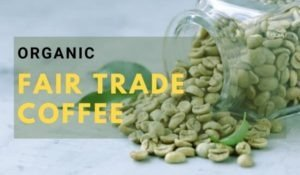 Organic Fair Trade Coffee